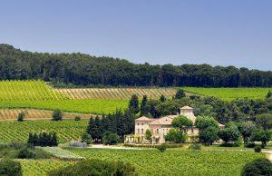 Provence Dreams Tour