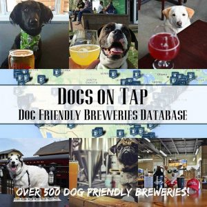 Dogs on Tap - Dog Friendly Brewery List